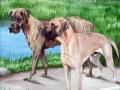 Fassadenmalerei, Tier und Jagdmalerei mit 2 Doggenportraits