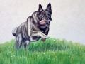 Fassadenmalerei, Tier und Jagdmalerei mit Schäferhund im Sprung